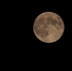 Super Moon2