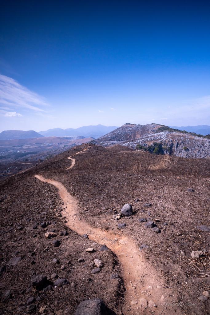 野焼き後の稜線を行く