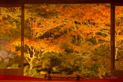 田川 川崎町 藤江氏魚楽園 ライトアップ 2017/11/23