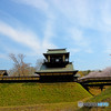 逆井城と桜