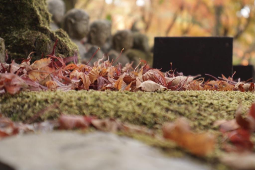 地蔵と紅葉