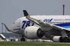 ANA 787 JA815A