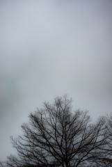 ある寒い日