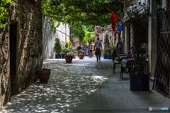 優しい木漏れ日の静かな通りを歩けば!
