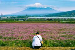 富士山れんげまつり(の後)撮影中
