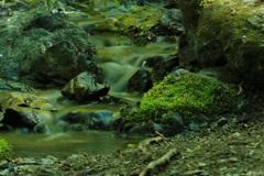 緑いろ、自然浴