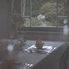 梅雨の日、硝子扉の中の、硝子越しの窓外