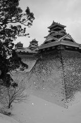 白銀の熊本城