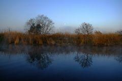 beautifl blue morning