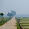 ベトナム田園風景