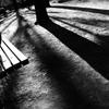 ベンチと影