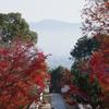 矢田寺の紅葉