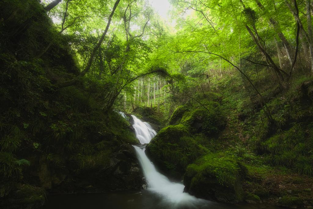 横川の下滝(過去撮影)