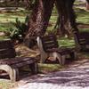 Bench in Pasir Ris Park 01