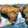 11月のダム湖