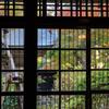 三浦館 ガラス戸から