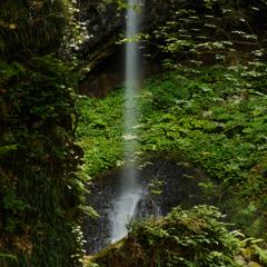 銚子の滝 水勢