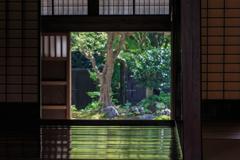 三浦館 床板の緑