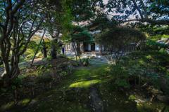 三浦館 庭の一隅より