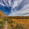 大沼の木道
