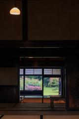 三浦館 遠い庭