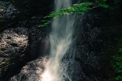 峨瓏の滝 青葉