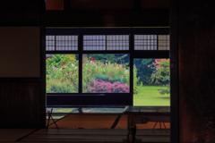 三浦館 初秋の花