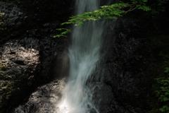峨瓏の滝 新緑