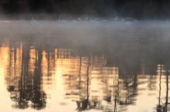朝靄の小泉潟