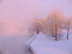 川霧照らされて