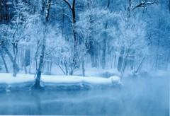 極寒の鳥沼公園