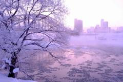 川霧に隠れて