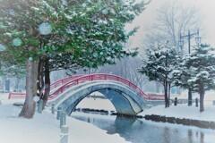 雪舞う公園で