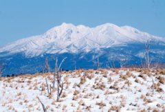 今冬の道東めぐり 斜里岳を望む