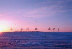 今冬の道東めぐり 夕陽のメルヘンの丘