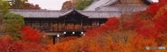 2019紅葉(東福寺)