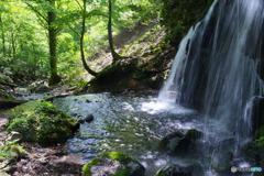 2019年プレイバック 5月 兵庫県新温泉町 猿壺の滝