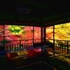2014紅葉・瑠璃光院②ver.2(書院2階より瑠璃の庭)