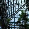 温室と青空