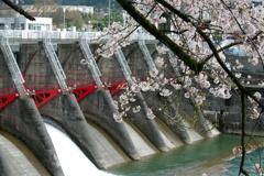 庄川沿いの風景