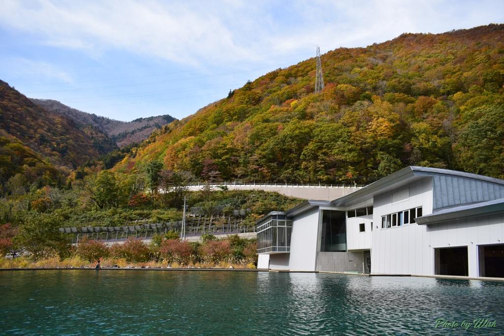 ダムサイドパークから見る紅葉風景