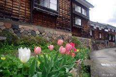 4月の城端土蔵