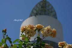 タワーと薔薇