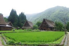 7月の菅沼集落