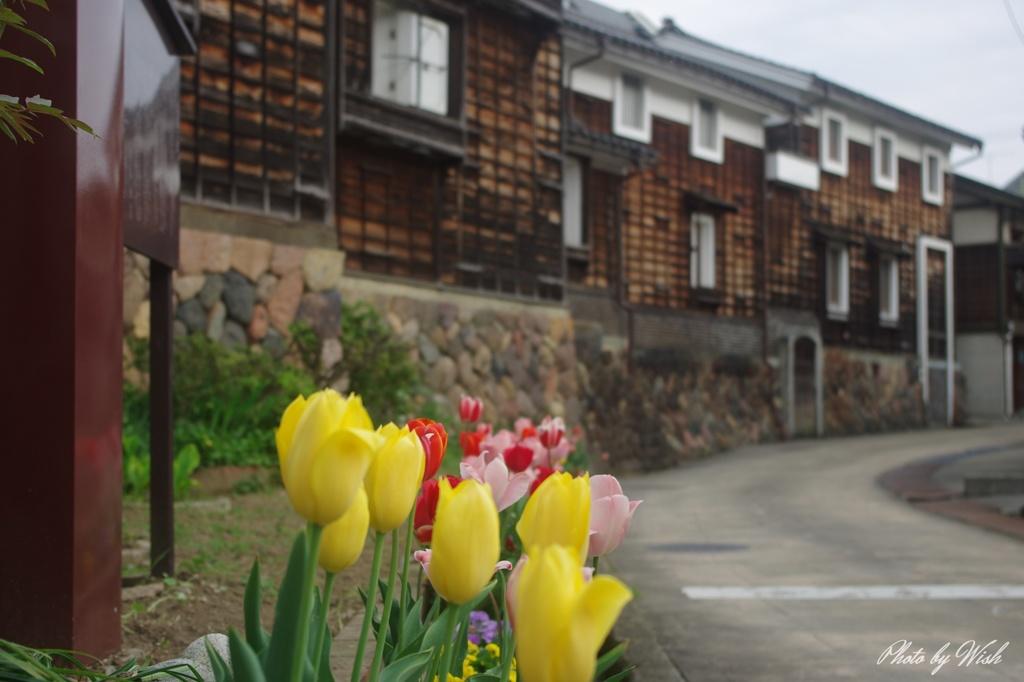 4月の城端