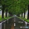 雨の旅路にて