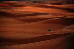 モロッコの思い出