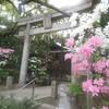 ピンクの花と鳥居