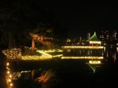 福岡市大濠公園イルミネーション ⑤