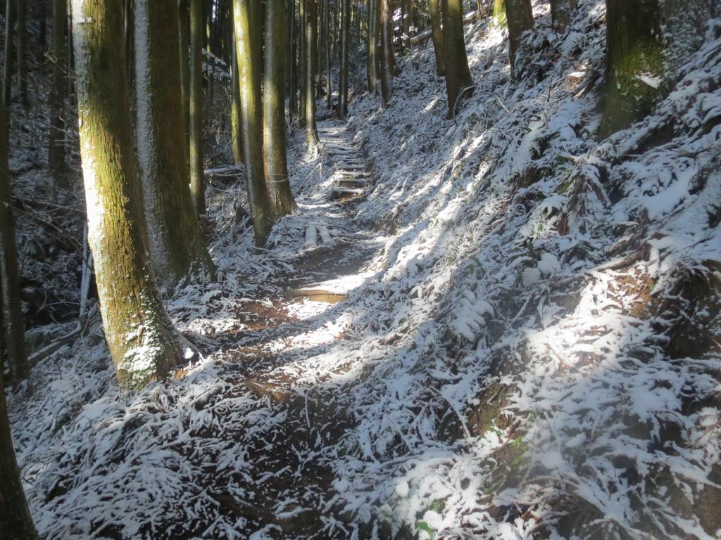 雪景色 8
